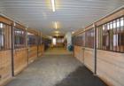 19815 Mule Barn Road Westfield IN 46074 | MLS 21346839 Photo 10